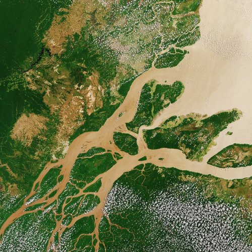 List of Amazon River Tributaries