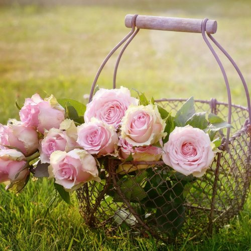 Rose Basket jigsaw puzzle