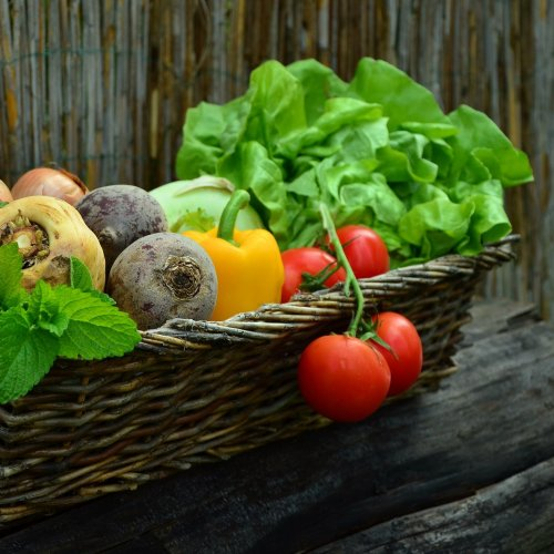 Basket full of Vegetables jigsaw puzzle