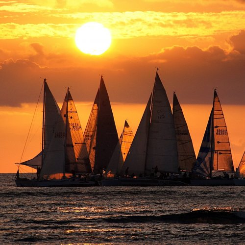 Yachts at the sunset jigsaw puzzle