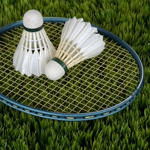 Badminton Quiz: questions and answers