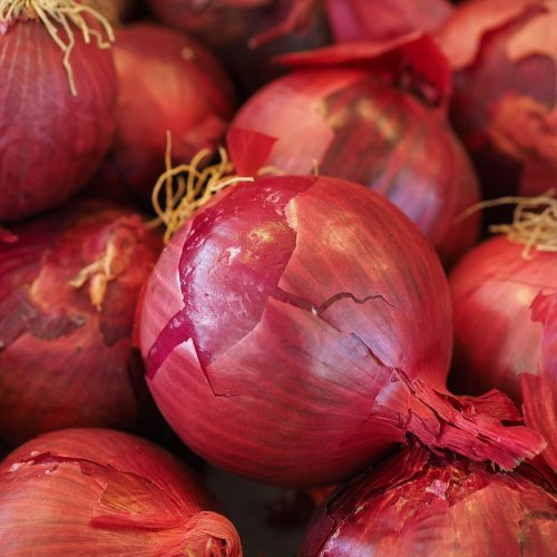 Onion Quiz: questions and answers