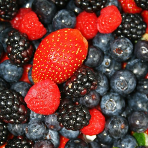 Berries Quiz: questions and answers