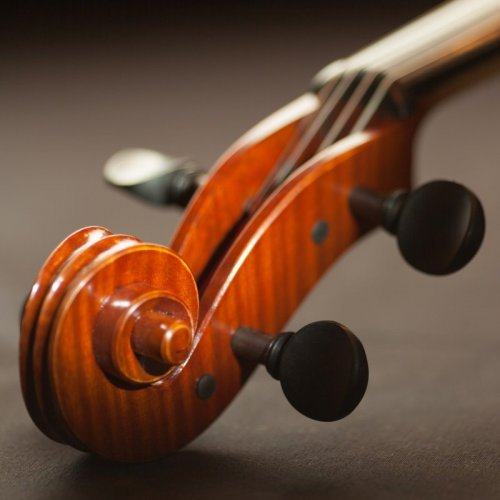 Musical Instruments Quiz: questions and answers