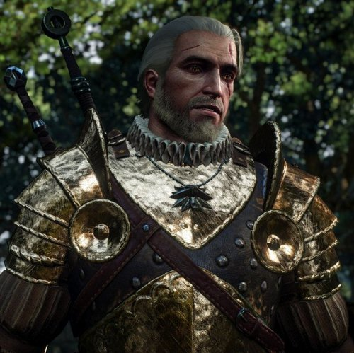 The Witcher Quiz
